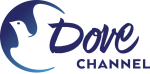 Dove Channel 쿠폰
